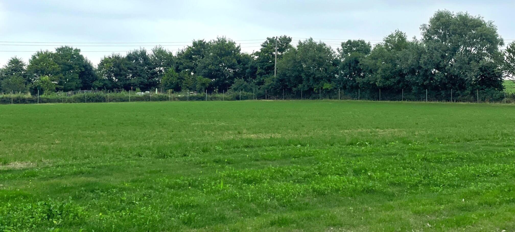 Blewbury Dog Park: Secure dog walking field close to Didcot, Wallingford, Wantage & Abingdon